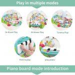 Piano-Play-Gym-Des-4